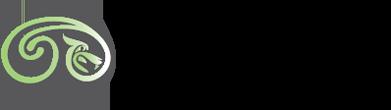Netsolus